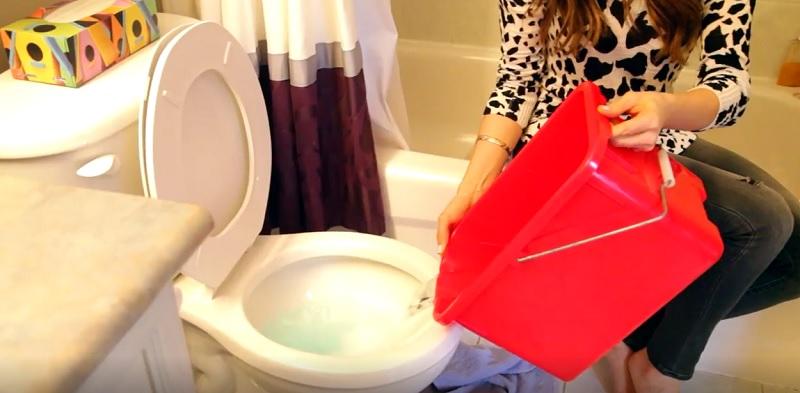 Ведро горячей воды — вот что понадобилось ей, чтобы решить эту надоедливую проблему!