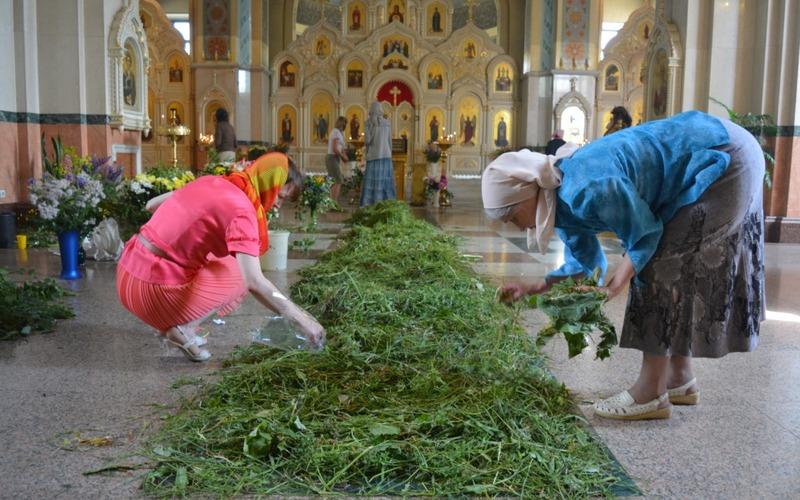 Травы на Троицу, которые обязательно должны быть в твоем доме, чтобы очистить и защитить его. Никогда не нарушаю традиций и тебе советую.