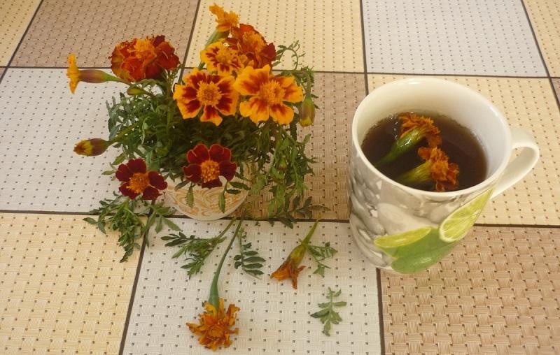 Бархатцы (чернобрывцы): снадобье от 100 недомоганий можно найти на каждой клумбе. Оказывается, эти цветы — незаменимая пряность в блюдах грузинской кухни.