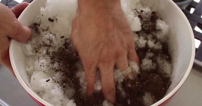 Этот человек использует подгузники в садоводстве. То, до чего он додумался, — просто гениально!