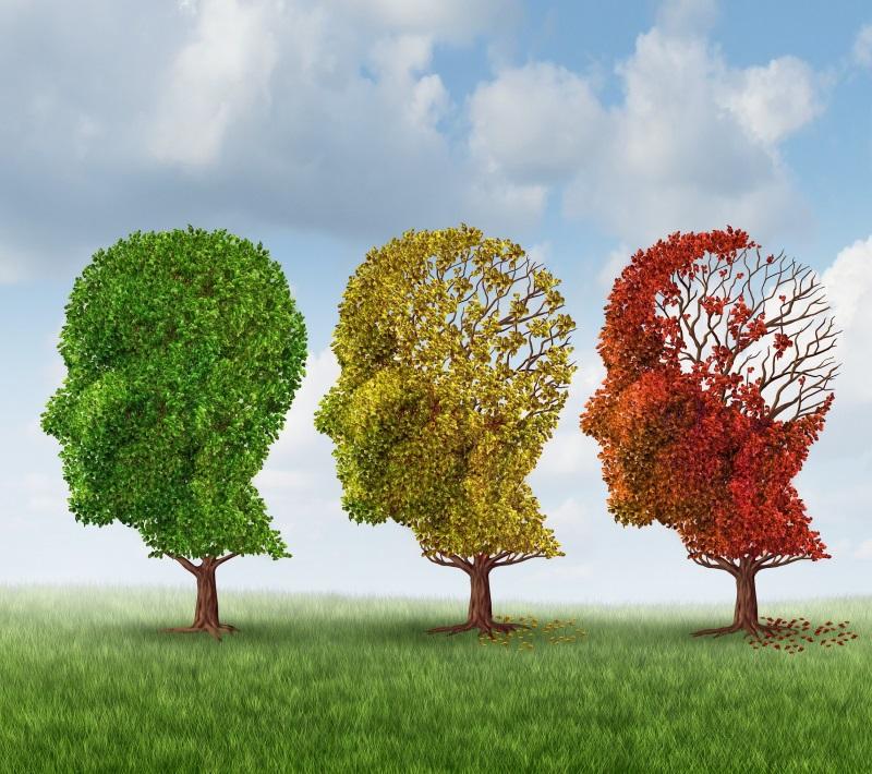 В здравом уме и твердой памяти: 4 научных способа продлить молодость мозга. Фитнес для мозга.