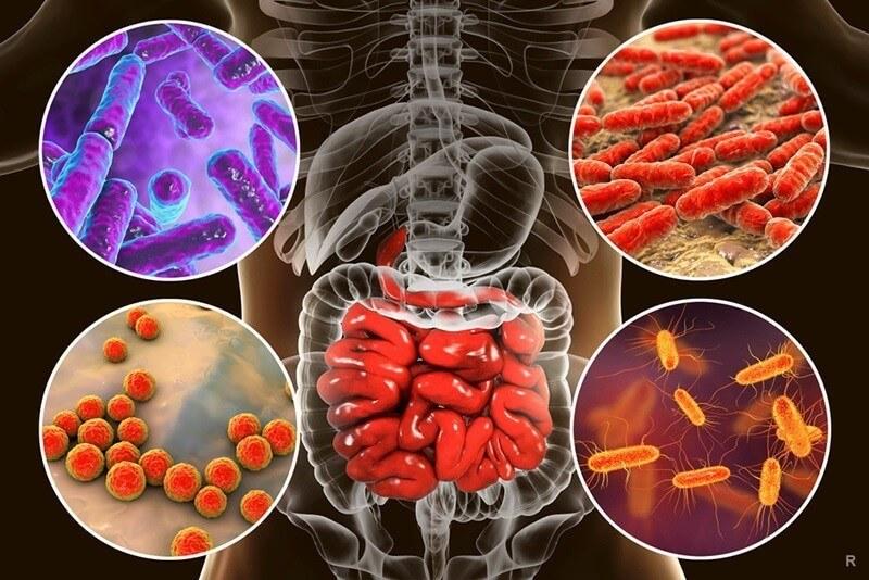 Как лечить воспалительные заболевания кишечника